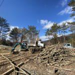 山仕事で薪作り