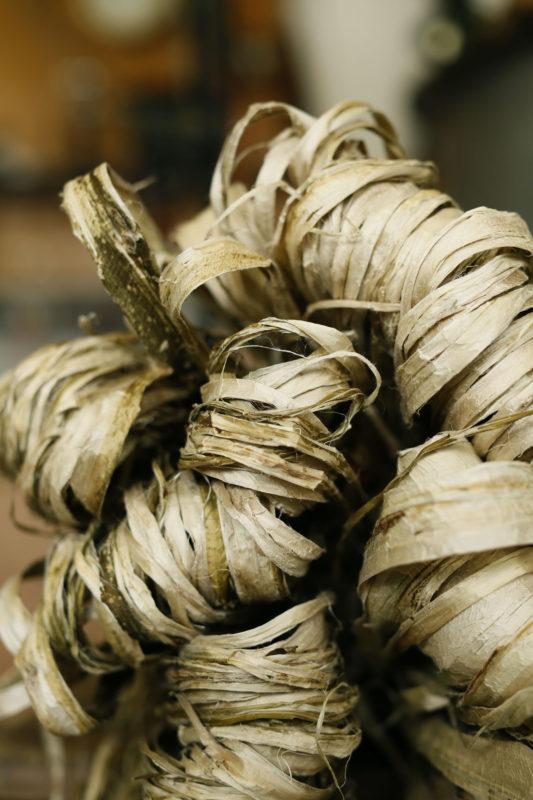 乾燥した楮原料 dried kozo material