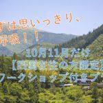 まずは、思いっきり深呼吸!没頭できる自然と文化が四国にあります【10月・11月だけ】四国在住の方限定 宿泊&ワークショップ・プラン